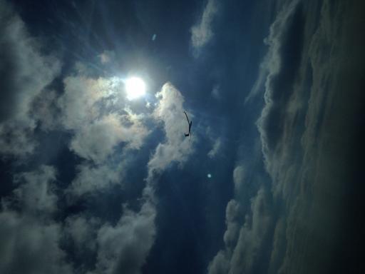 17  Dolfijnend naar de zon