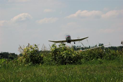 74  Hedge hopping