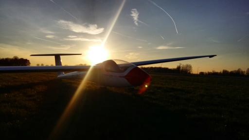 32  Shiny glider