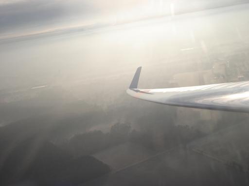 28  Sylvester  amp  Smogvliegen in Zwartberg 2