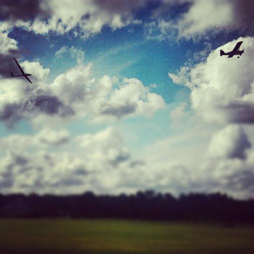 20  Early birdy, take off
